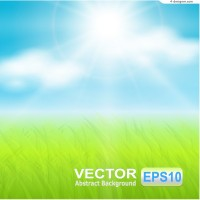 Sunshine grass background vector material