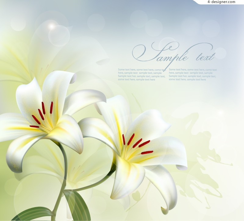 White Lily background vector material