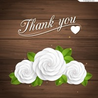 White flowersThanksgiving background vector material