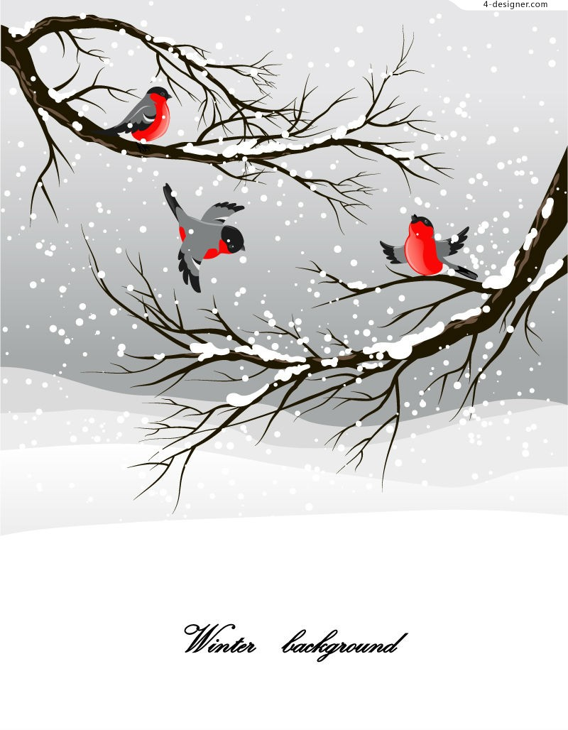 Winter snow birds illustrator vector material