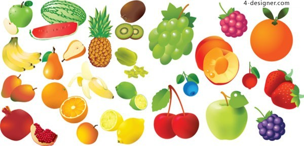 A variety of realistic and tempting fruit vector materials