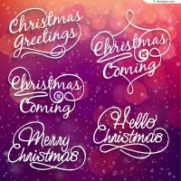 Exquisite Christmas WordArt vector material