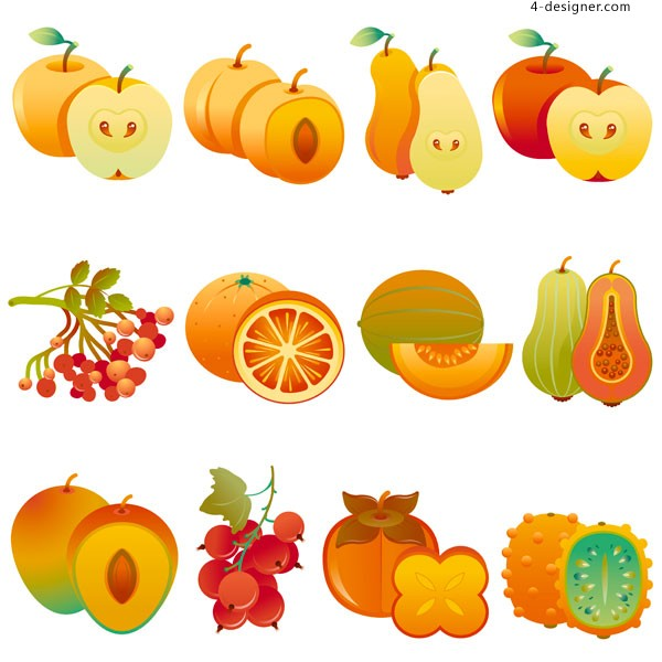 Various vector materials of fruits and melons