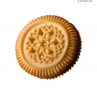 Vector material of biscuits with realistic style