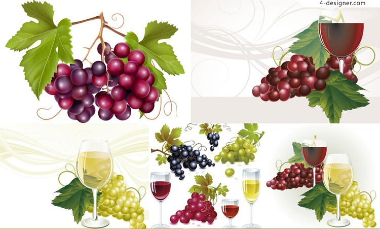 Vector material of delicate grape and goblet