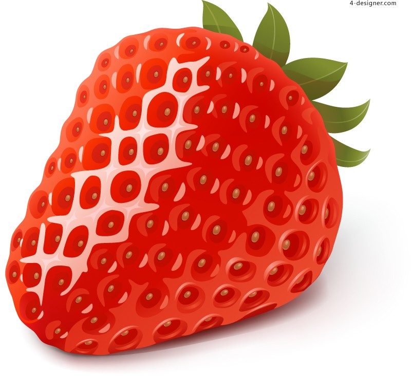 Vector material of delicious fresh strawberry