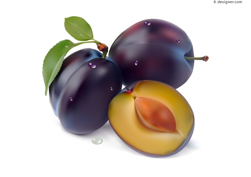 Vector material of delicious prunes