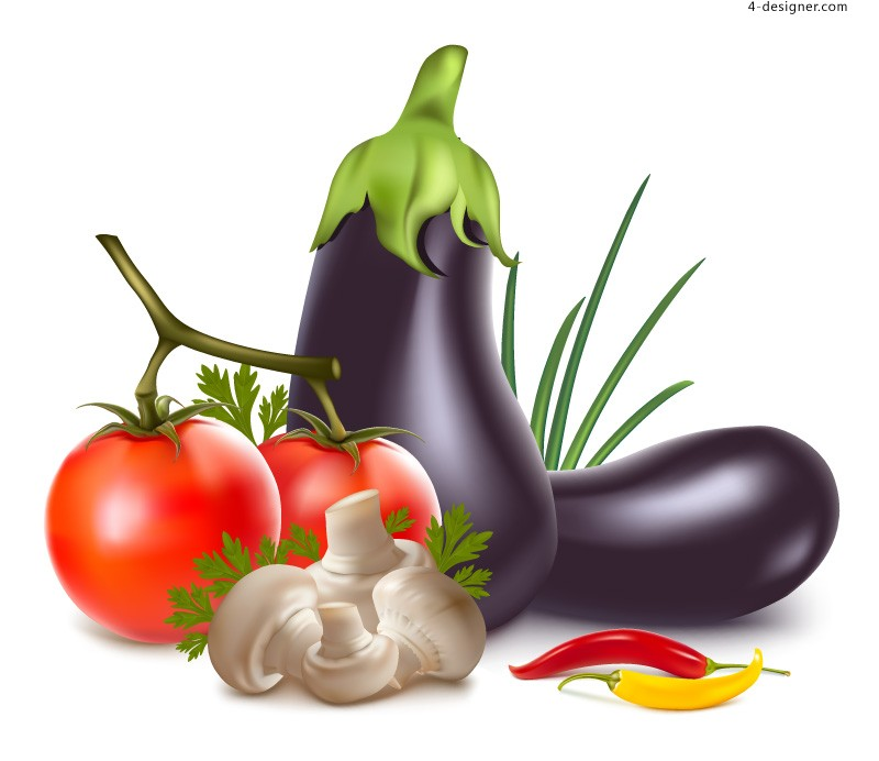 Vector material of delicious vegetables