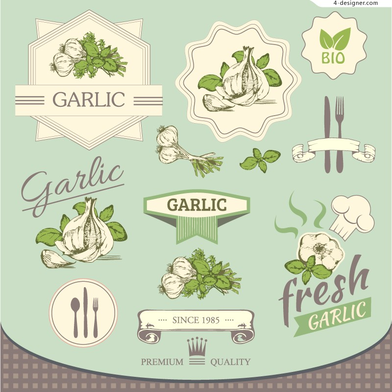 Vector material of fresh garlic label