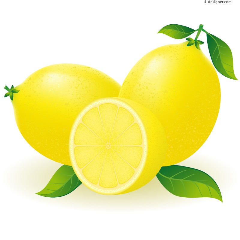 Vector material of fresh lemon