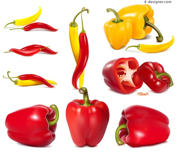 Vector material of realistic drawing bell pepper and chili