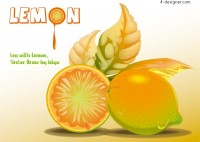 Vector material of realistic lemon poster