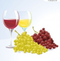 Vector materials of grape and wine