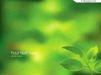 Fresh green leaves background vector material