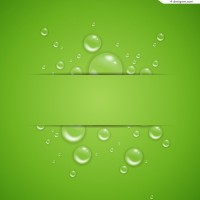 Transparent bubbles green background vector material