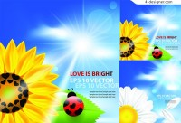Vector material of sunny sunflower background