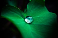 Drops HD pictures