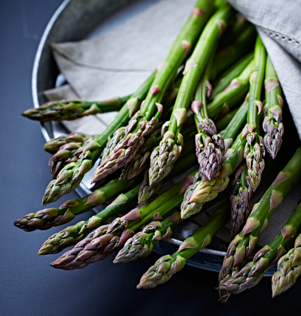 Asparagus HD pictures