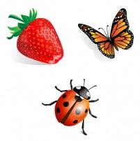PNG icon insect spring 256x256px