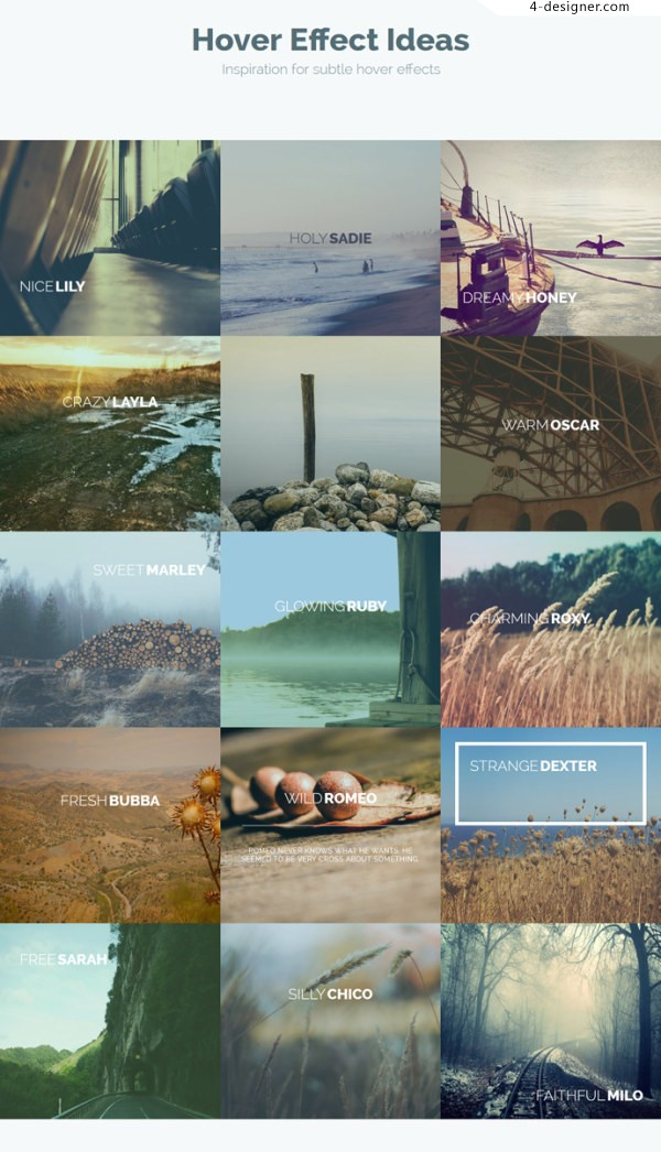 15 kinds Hover picture effects