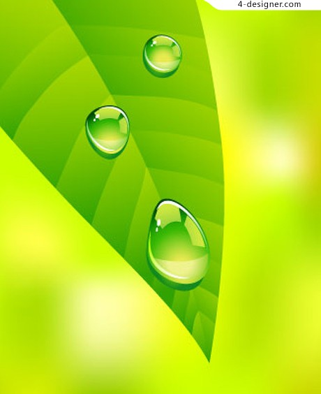 Fresh green leaves water drops vector material
