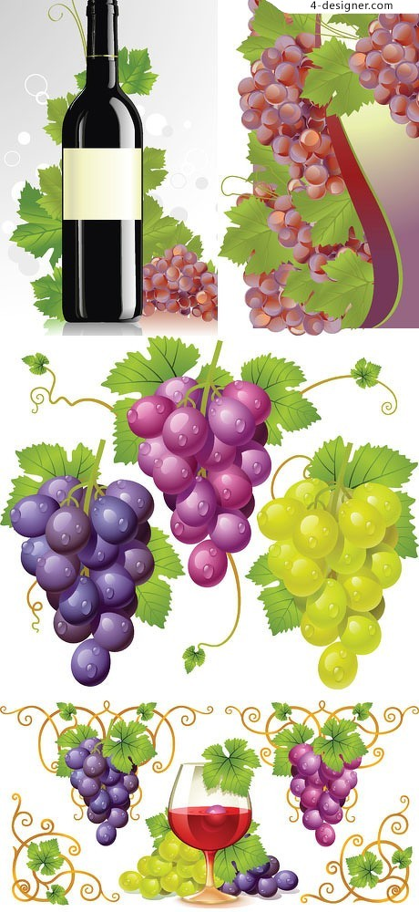 Fruit wine theme vector material