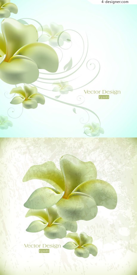 White petals blooming flowers vector material