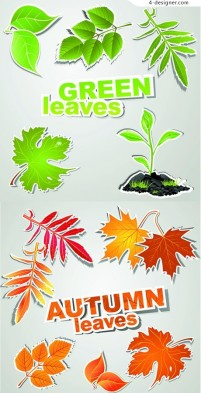 Spring and autumn leaves vector material