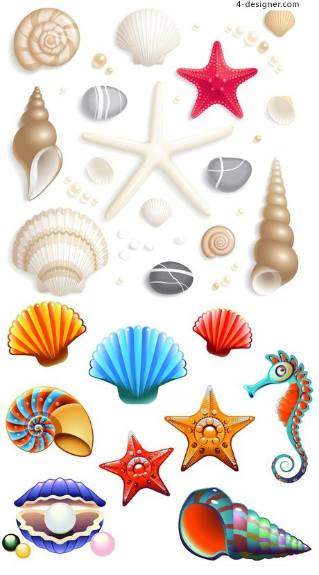 Cute cartoon shell vector material