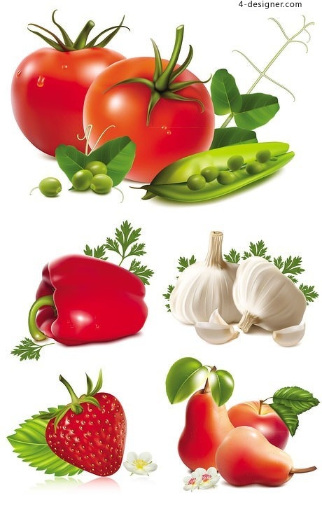 Fresh fruits and vegetables vector material