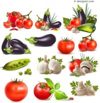 Vegetables realistic vector material