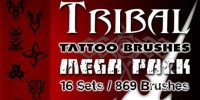 869 shall Tattoo ps brush material