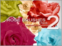 Beautiful roses brushes psd material