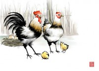 Rooster hen chicks painting PSD material
