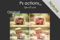 Photoshop action nature