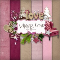 Romantic Winter decorative material