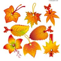 Fine leaves label 1 vector material