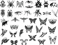 Silhouette insects
