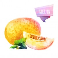 Delicious watercolor Hami melon