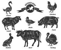 Animal meat notes