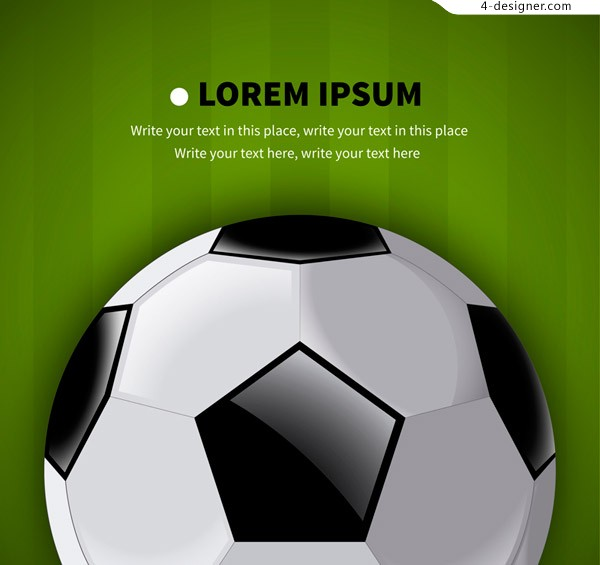 Exquisite black and white football