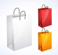 Exquisite shopping bag vector