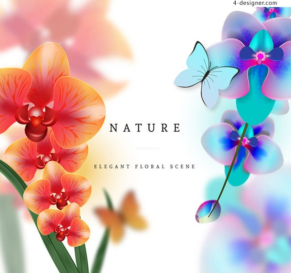 Phalaenopsis and butterfly
