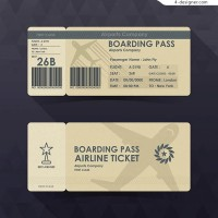 Aircraft registration ticket vector