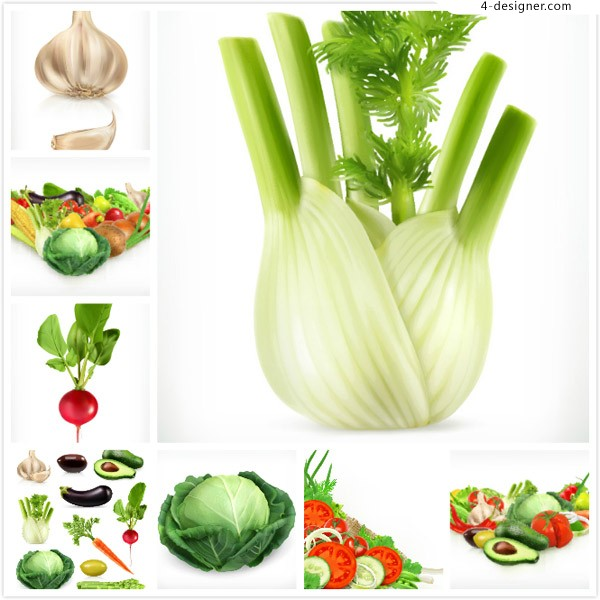Vegetable and fruit vector