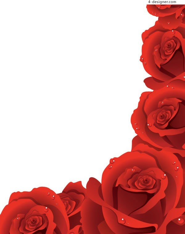 Edge vector of red rose