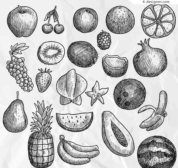 Hand painted fruit vector