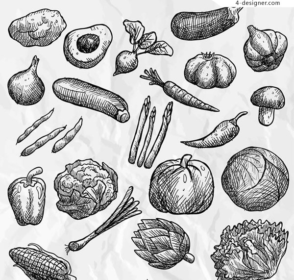 Hand painted vegetable vector