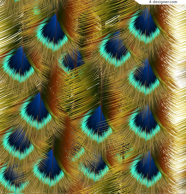 Lifelike peacock feathers