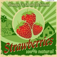Retro fresh strawberry Poster